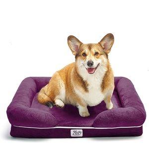 Brand new memory foam dog bed
